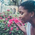 最近物忘れが多いと困ったら!アロマの香りが認知症と物忘れに効く?